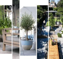 The-Garden-Store-Tuin-Interieur-Plantstyling-projects-frame